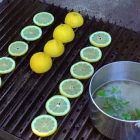 Grilled Lemonade Video