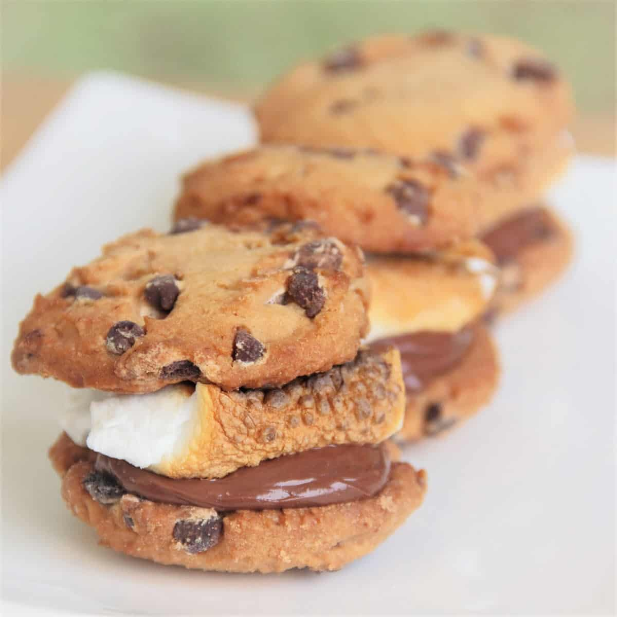 Chocolate Chip Smore