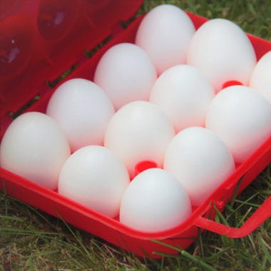 Eggs in a camp storage box