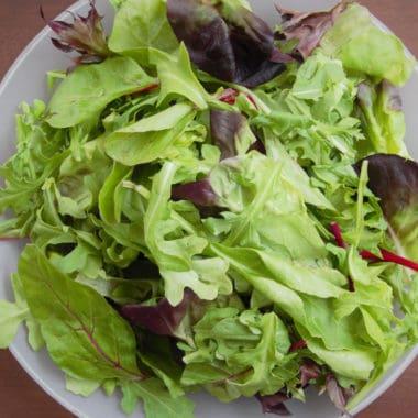 Selection of mixed salad greens