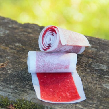 Two rolls of baking paper rolled strawberry fruit leather sitting on a picnic table.